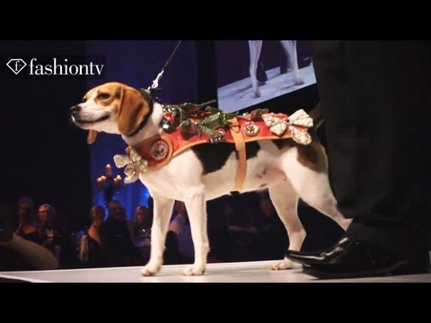 Dog Fashion Show! Collars & Coats Gala Ball 2012 ft David Gandy | FashionTV
