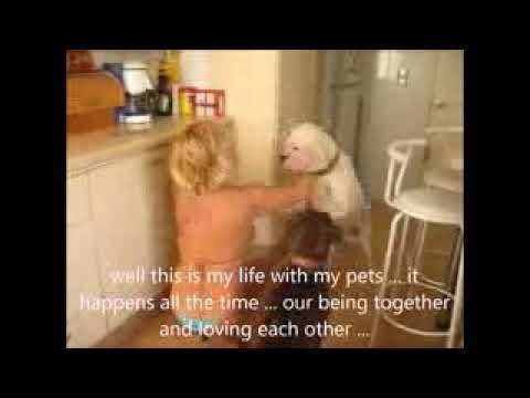 Dog attack hot girl in the home - Funny Dog want playing with women - Dog love girl