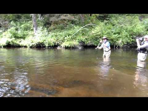 Guided Freshwater Salmon & Trout Fishing, near Naha Bay, Ketchikan, Alaska – 02.MP4