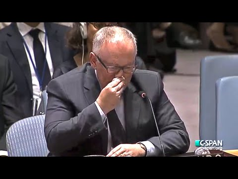 Emotional MH17 Speech By Netherlands Delegate to UN