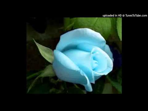 Adi Vanmathi en Paarvathy- Karaoke For Male Singers (HamsaRishi)