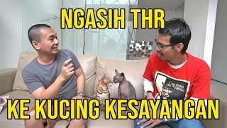 Video NGASIH THR KE KUCING KESAYANGAN MP3, 3GP, MP4, WEBM, AVI, FLV Mei 2019
