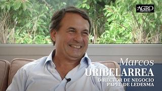 Marcos Uribelarrea - Director de Negocios Papel de Ledesma