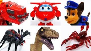 Video Toys Vs. Toys~! Go Dinotrux Superwings Paw Patrol MP3, 3GP, MP4, WEBM, AVI, FLV Juli 2018