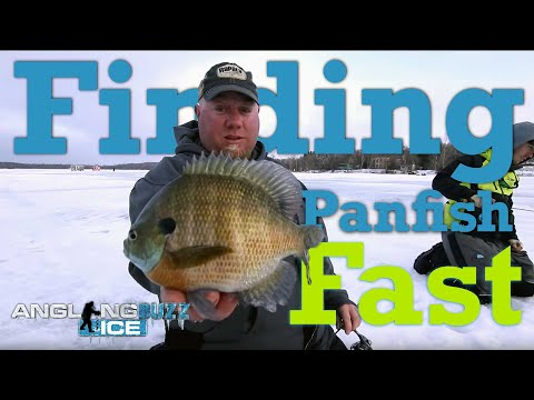 Finding Panfish Fast! — AnglingBuzz Ice