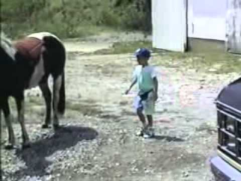 Kicked by a horse 2