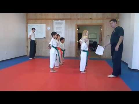 Hampton's Karate Academy - Class Roll Call and Inspection 01