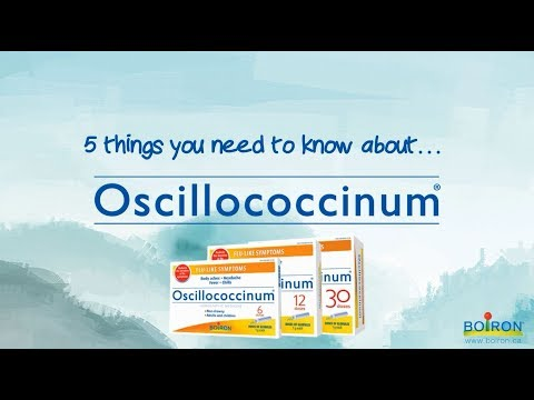 5 things you need to know about Oscillo