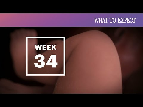 34 Weeks Pregnant | What To Expect (видео)