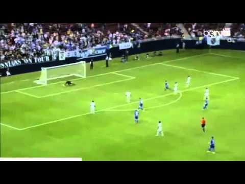 Edin Dzeko Amazing Goal ~ Bosnia & Herzegovina vs Ivory Coast 2-0 ~ 30/05/2014 Friendly