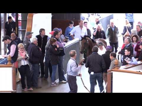 Tattersalls July Sale Day 1 Video Review 2015