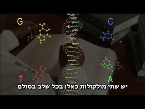 DNA (hebräische Untertitel)