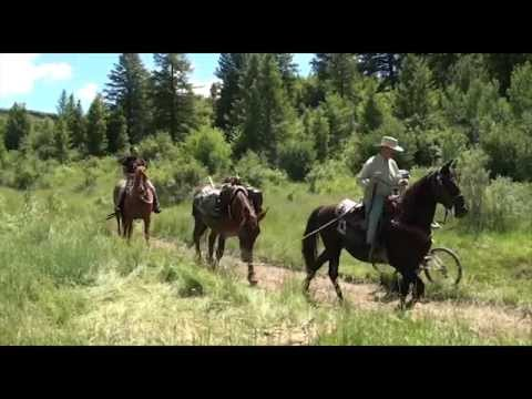 Trail Etiquette for hikers, bikers, and horse riders on the National Forest