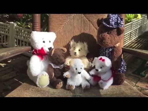 The Teddy Bunch