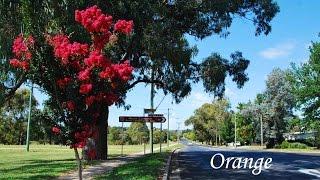 Orange Australia  city pictures gallery : Orange, NSW Australia