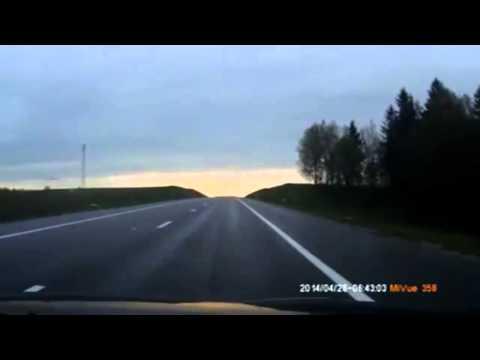 Осторожно лоси на дорогах