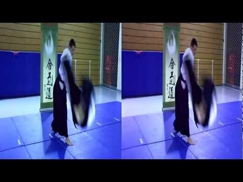 3D Video Aikido – Taijutsu