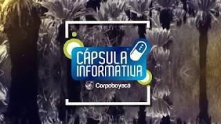Cápsula informativa Corpoboyacá 12 al 16 de Febrero 2018
