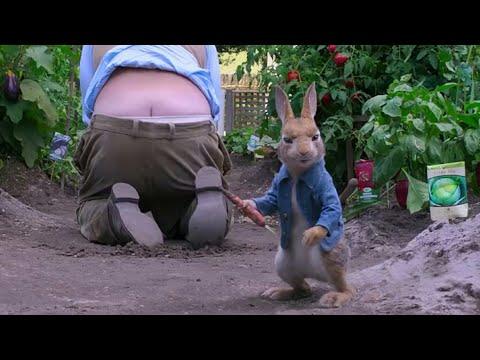 Peter Rabbit 2018 #2 Hindi urdu dubbed man vs Rabbit