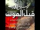 Shekh Jameel