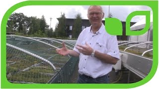 Torfabbau: Welches Moos wächst am schnellsten Teil 14