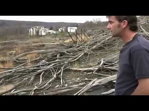 The Town That Was (2007) - Portrait of John Lokitis, the youngest of 11 remaining residents of Centralia, Pennsylvania, a town destroyed by an underground mine fire.