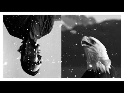 Ю-Питер – Чёрная птица - белые крылья
