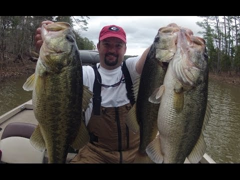 How to fish Lipless Crankbaits - Bass Fishing