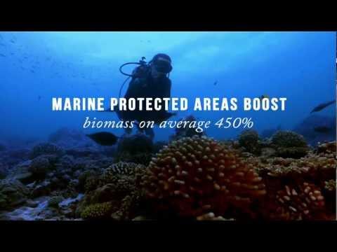 Globale Partnerschaft für Ozeane