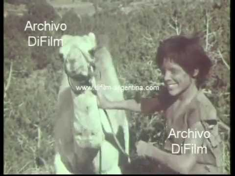 "DiFilm - Trailer Del Film ""One Little Indian"" 1973"