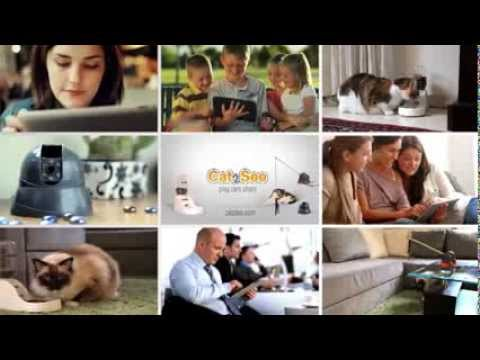The Israeli Start-Up Behind the Hottest Viral Videos on the Web (VIDEO)