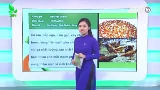 Tỷ lệ phối trộn thức ăn cho gà, vịt