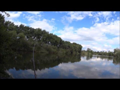 Feeder - dva záběry v přímém přenosu