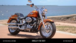 9. 2014 Harley Fat Boy Test