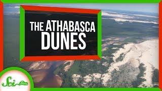 The Freezing Dunes of Northern Canada by  SciShow