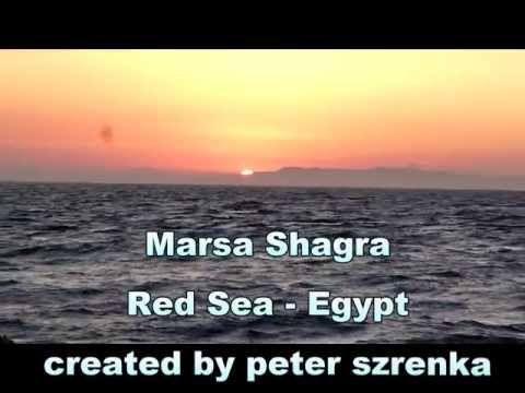 Marsa Shagra - Underwater World