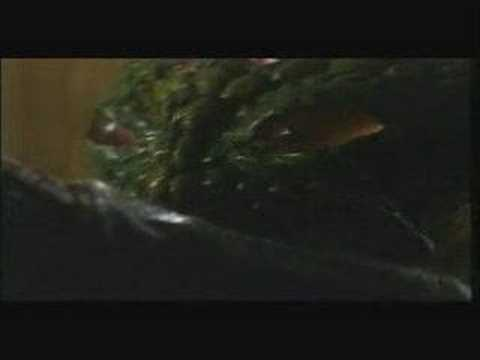 Dark Forest (1992) Trailer [german]