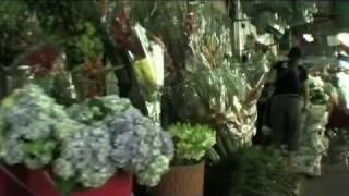 Pakklong Talad (Flower Market) - TENFACE Bangkok