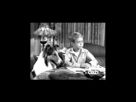 "Lassie - Episode #297 - ""The Fawn Patrol"" - Season 9, Ep. 6 - 11/04/1962"