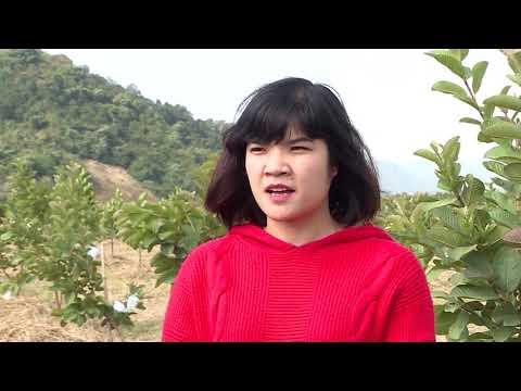 Một năm nhìn lại Chương trình xây dựng nông thôn mới tỉnh Điện Biên