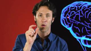 Your Brain is You: Neuron to Neuron (Part 3 of 6)
