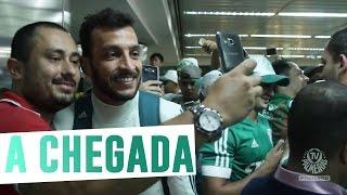 A torcida do Palmeiras fez grande festa no aeroporto de Guarulhos para recepcionar o elenco do Verdão, que retornou ao Brasil...