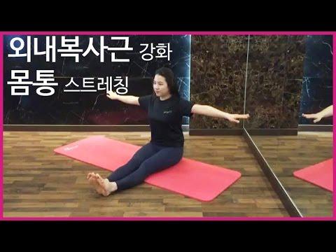 몸의 유연성과 근력강화를 돕는 운동 [스파인 트위스트]