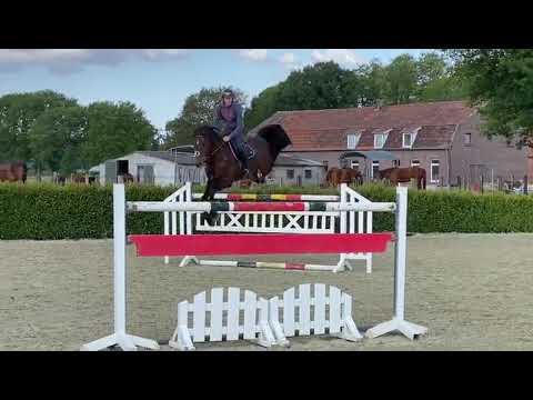 Jilbert van 't Ruytershof - Training - Alexander Housen