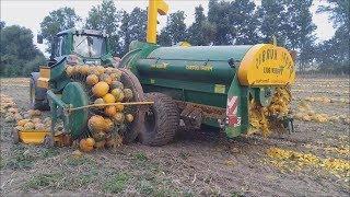 Video Modern Agriculture Machines Harvesters: Pumpkin and Squash Field Fertilizing MP3, 3GP, MP4, WEBM, AVI, FLV April 2019
