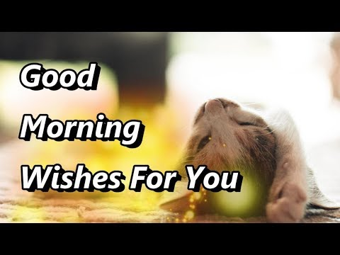 Funny quotes - Good Morning Wishes, Funny Whatsapp Status, Good Morning Greetings,Telugu Quotes