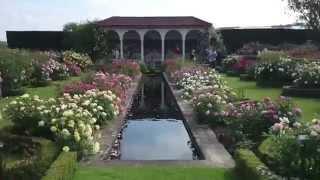 Albrighton United Kingdom  City pictures : Visit David Austin Rose Gardens Albrighton UK 2014