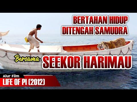 BERTAHAN HIDUP DITENGAH SAMUDRA BERSAMA SEEKOR HARIMAU | ALUR CERITA LIFE OF PI (2012)