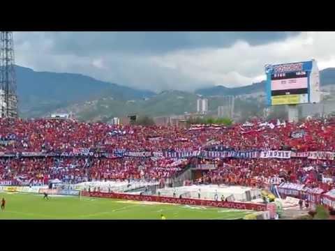 REXIXTENXIA NORTE - FECHA 18 (DIM VS CHICO) - Rexixtenxia Norte - Independiente Medellín