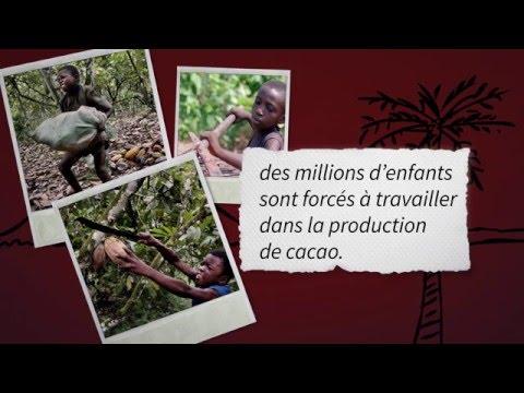 Traite d'enfants chez Nestlé : La vidéo que le géant du chocolat veut vous cacher